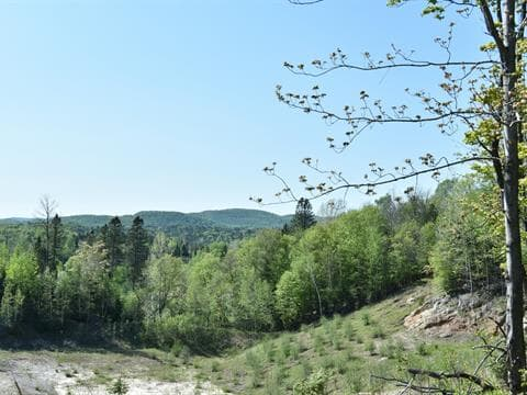 Lot for sale in Wentworth-Nord, Laurentides, Chemin  Spotz, 20246361 - Centris.ca