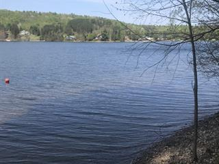 Lot for sale in Lac-Simon, Outaouais, Chemin du Simonet, 19693344 - Centris.ca