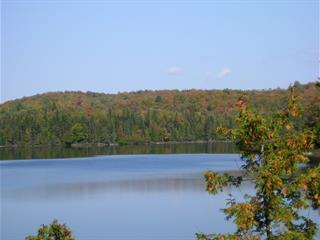 Lot for sale in La Minerve, Laurentides, 1, Chemin  Doré, 21363467 - Centris.ca