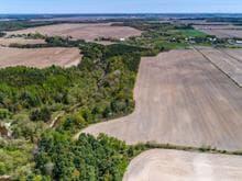 Terre à vendre à Saint-Pie-de-Guire, Centre-du-Québec, 485, 13e Rang Est, 15790652 - Centris.ca