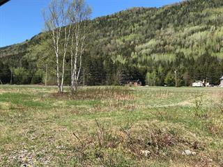 Terrain à vendre à Nouvelle, Gaspésie/Îles-de-la-Madeleine, Chemin du Grand-Platin, 14683094 - Centris.ca