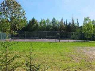 Terrain à vendre à Mont-Tremblant, Laurentides, Chemin de Courchevel, 22117604 - Centris.ca