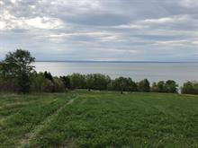 Lot for sale in La Malbaie, Capitale-Nationale, boulevard  Malcolm-Fraser, 13560701 - Centris.ca