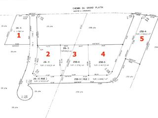 Lot for sale in Nouvelle, Gaspésie/Îles-de-la-Madeleine, Chemin du Grand-Platin, 9747299 - Centris.ca