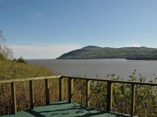 Maison à vendre à Baie-Saint-Paul, Capitale-Nationale, 211, Chemin du Cap-aux-Rets, 11533491 - Centris.ca