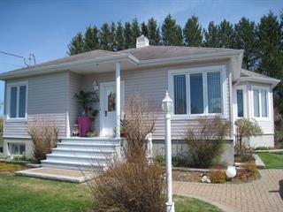 Maison à vendre à Saint-Adelme, Bas-Saint-Laurent, 266, 6e Rang Ouest, 14664684 - Centris.ca