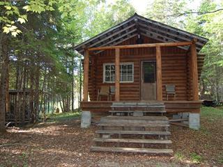 Maison à vendre à La Macaza, Laurentides, Rue  Non Disponible-Unavailable, 26202905 - Centris.ca