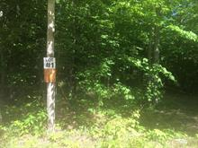 Lot for sale in Montebello, Outaouais, Chemin  Saint-Hyacinthe, 14977921 - Centris.ca