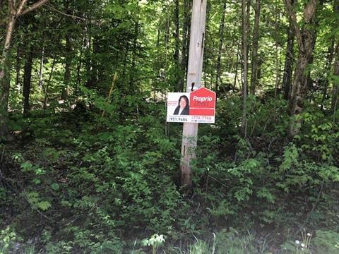Terrain à vendre à Chute-Saint-Philippe, Laurentides, Chemin du Lac-des-Cornes, 14432105 - Centris.ca