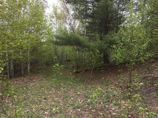Terrain à vendre à Lac-Simon, Outaouais, Croissant du Cerf, 9335044 - Centris.ca