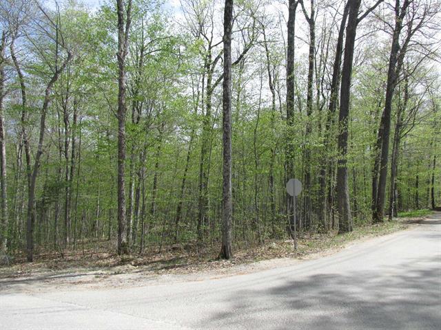 Terrain à vendre à Montebello, Outaouais, Chemin  Braulière, 10141643 - Centris.ca