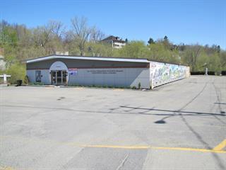 Commercial building for sale in Stanstead - Ville, Estrie, 14, boulevard  Notre-Dame Ouest, 28407066 - Centris.ca