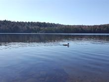 Lot for sale in Labelle, Laurentides, 7346, Chemin du Lac-Labelle, 13372227 - Centris.ca