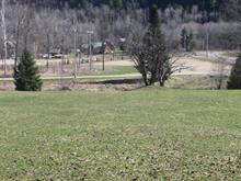 Terrain à vendre à Notre-Dame-de-la-Salette, Outaouais, 16, Chemin du Ruisseau, 14899203 - Centris.ca