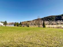 Lot for sale in Notre-Dame-de-la-Salette, Outaouais, 10, Chemin du Ruisseau, 17837017 - Centris.ca