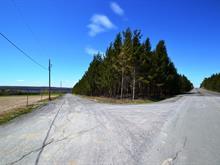 Terre à vendre à Lambton, Estrie, Rang  Saint-Michel, 19872490 - Centris.ca