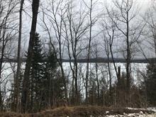 Terrain à vendre à Lac-des-Plages, Outaouais, Chemin du Tour-du-Lac, 22384639 - Centris