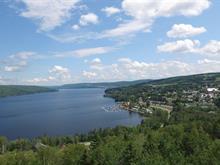 Terrain à vendre à Témiscouata-sur-le-Lac, Bas-Saint-Laurent, Chemin du Lac, 16566788 - Centris.ca
