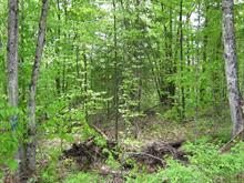 Terrain à vendre à Boileau, Outaouais, Chemin de la Liberté, 25987563 - Centris.ca