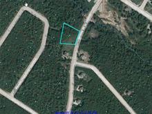 Terrain à vendre à Petite-Rivière-Saint-François, Capitale-Nationale, Chemin de la Martine, 27896324 - Centris.ca
