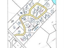 Terrain à vendre à Saint-Michel-des-Saints, Lanaudière, Chemin des Vallons, 19056710 - Centris.ca
