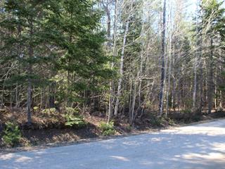 Terrain à vendre à Saint-Émile-de-Suffolk, Outaouais, Impasse de la Baie, 18346775 - Centris.ca
