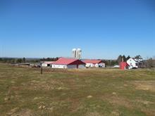 Farm for sale in Saint-Nazaire-de-Dorchester, Chaudière-Appalaches, 40, Route  216, 10884882 - Centris.ca