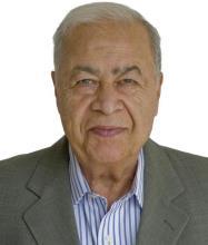 Hossein Torabi, Real Estate Broker