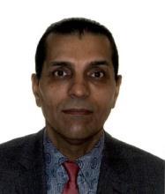 Nikpour Ismailzadeh, Real Estate Broker