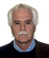 Gilles Laurent, Real Estate Broker