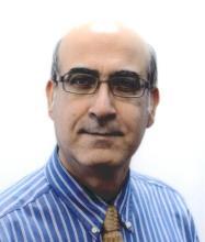 Mehran Meshgin, Residential and Commercial Real Estate Broker