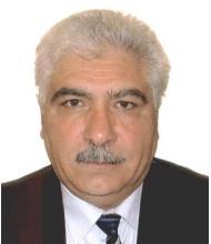 Mohammad Salari, Real Estate Broker