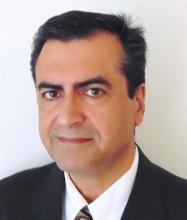 Mehran Khodadadi, Courtier immobilier