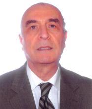 Habib Mamarbachi, Real Estate Broker